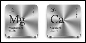 magnesium calcium spieren