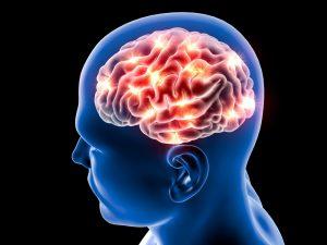 fibromyalgie-hersenen