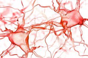 Wat is zenuwpijn? Welke vormen zijn er en wat zijn de symptomen?