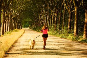 Samen sporten met je hond