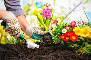 gewrichtspijn bij tuinieren