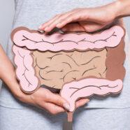 Darmbacteriën dragen bij aan succes gewrichtsvervanging