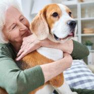 Aanraking huisdieren biedt troost tijdens coronacrisis